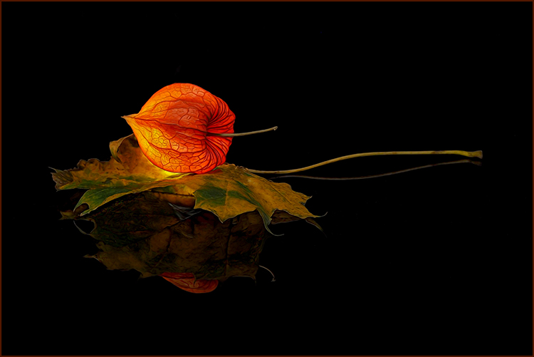 Valerie Interligi - Glowing Lantern - 26