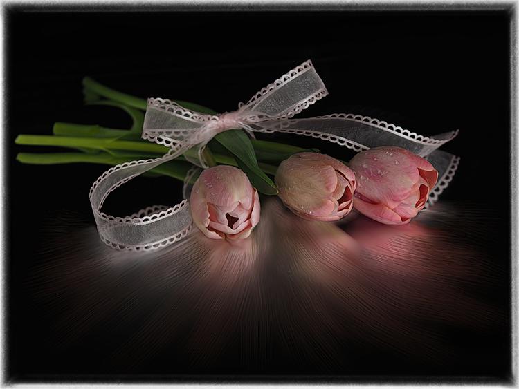 1st- Valerie Interligi- Tulips And Running Reflection- 26 Creative
