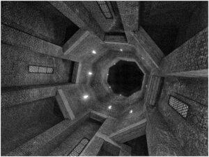 Susan Silkowitz-BW-S-Looking Up (Pilgrim State)-10 (IOM)