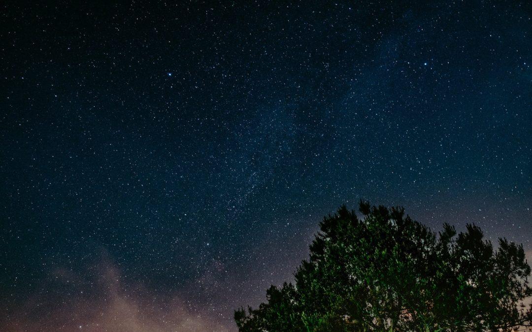 Yerkes Perseid Meteor Shower Viewing
