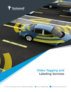 Video Tagging & Labeling Services