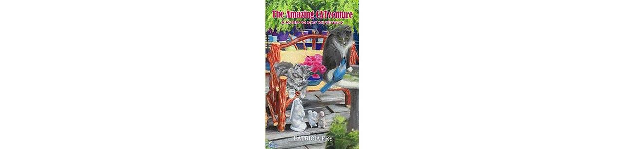 The Amazing CATventure