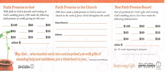2013 Surprising Gifts Campaign Pledge Card