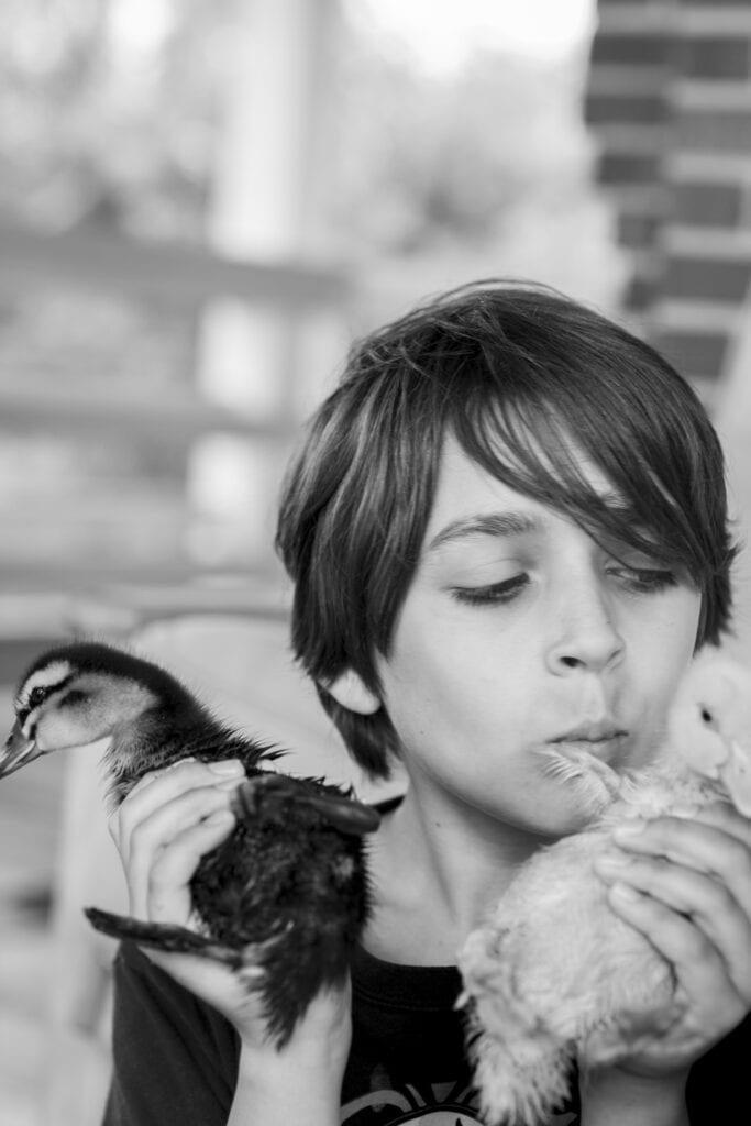 Boy with baby ducklings Leesburg Virginia