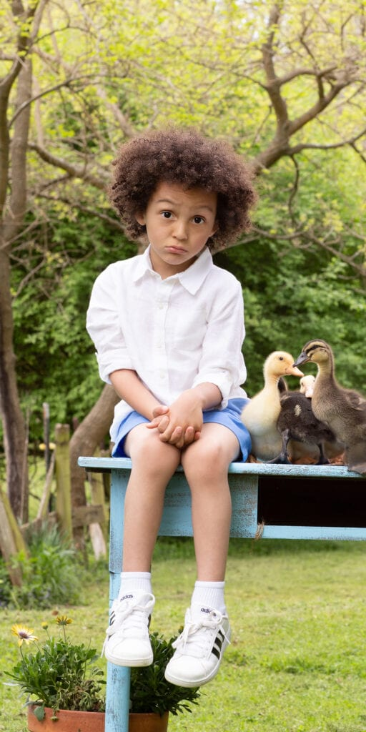 Funny faced little boy with ducklings Leesburg Virginia