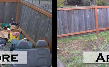 Yard Clean Up / Debris Removal