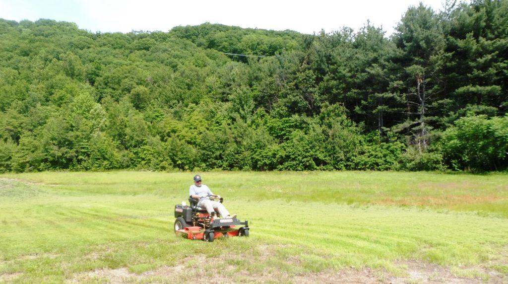 Jim, always a good grass cutting job
