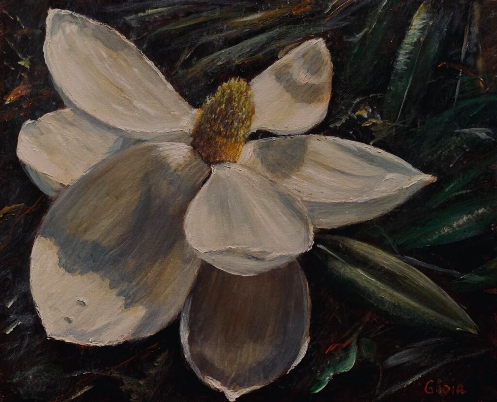 Painting of open magnolia bloom