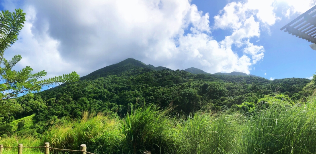 St. Kitts – Mountain behind Belle Mont Farms