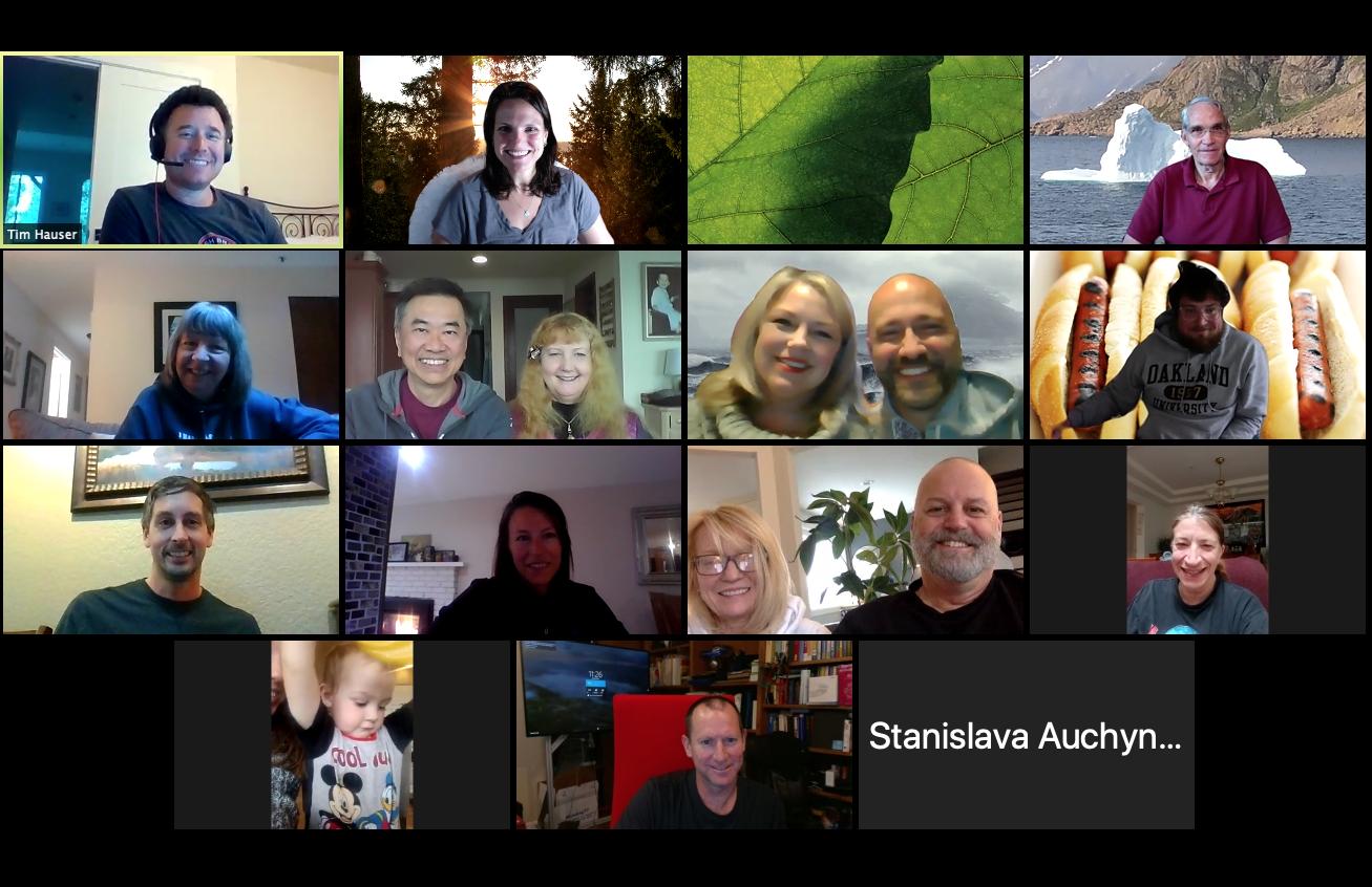 IBC members at virtual meeting