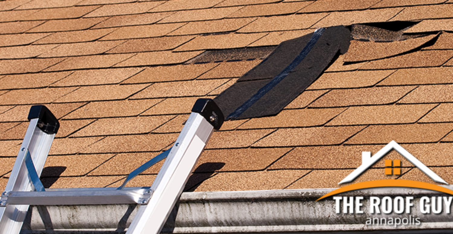 Perform a Self Inspection of Your Roof