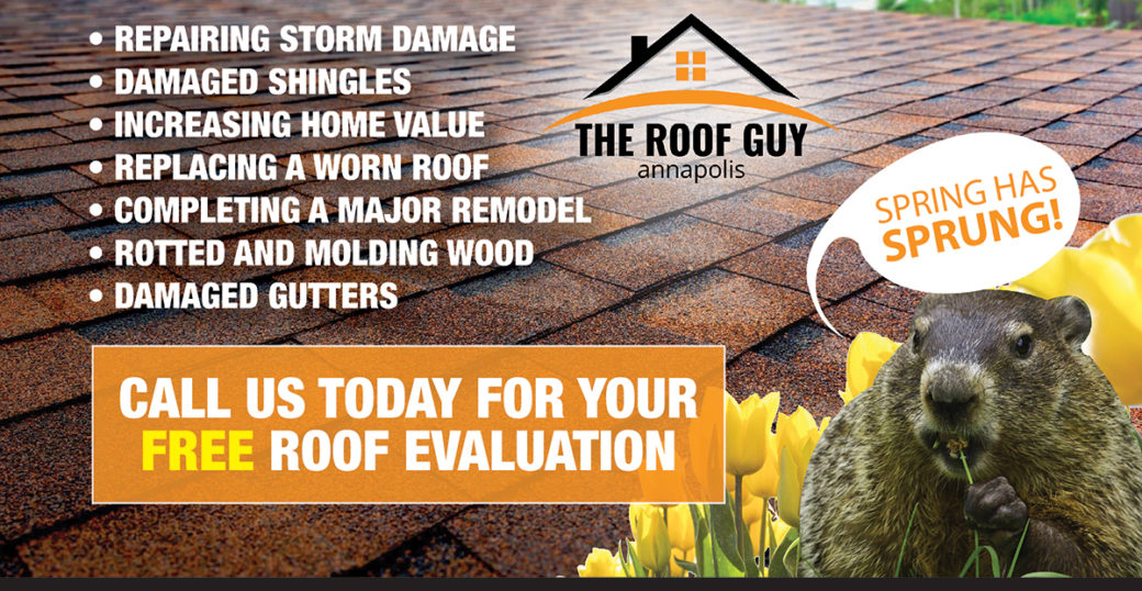 What You Need to Know about Spring Roof Maintenance