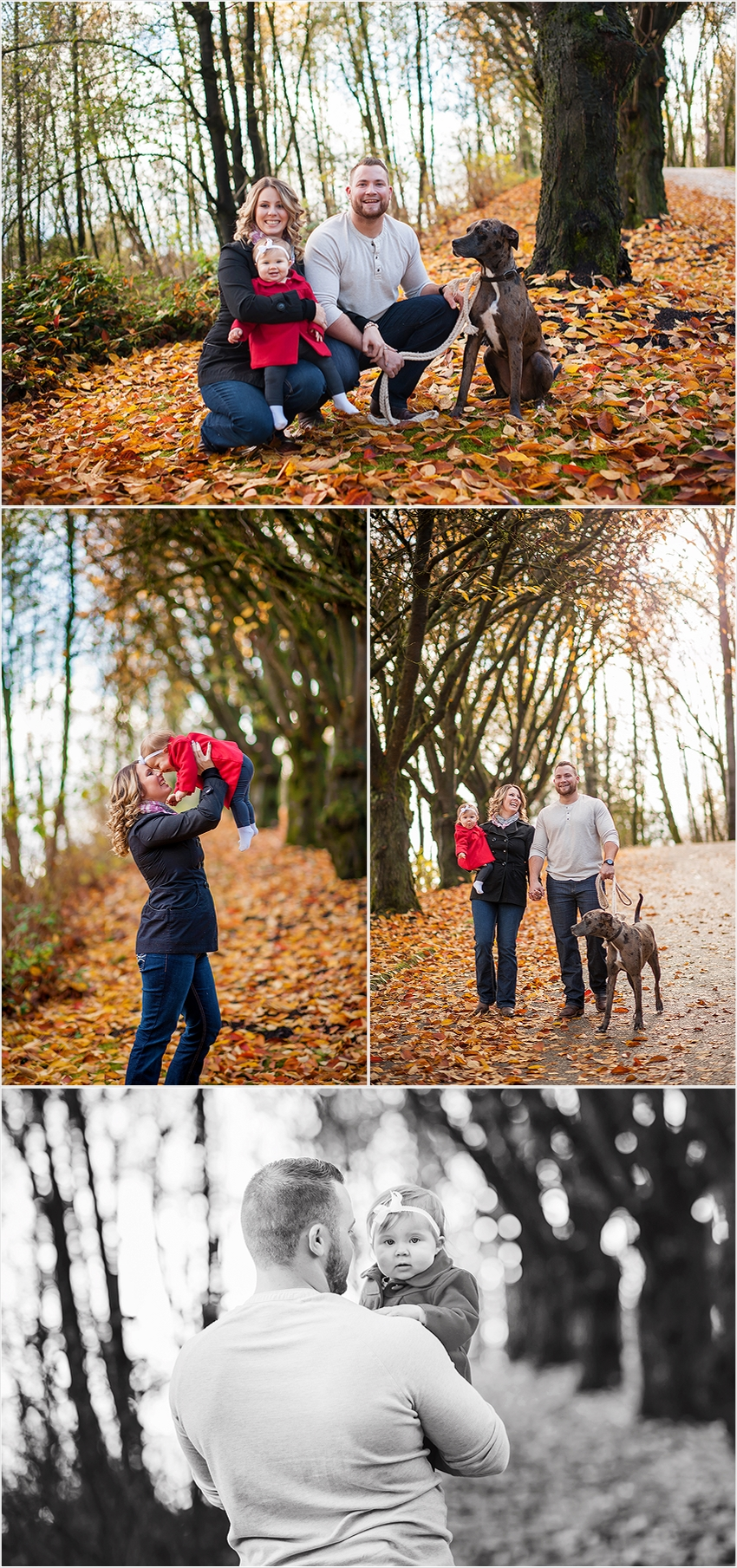 Abbotsford Family fall photographer 002 (Side 2)