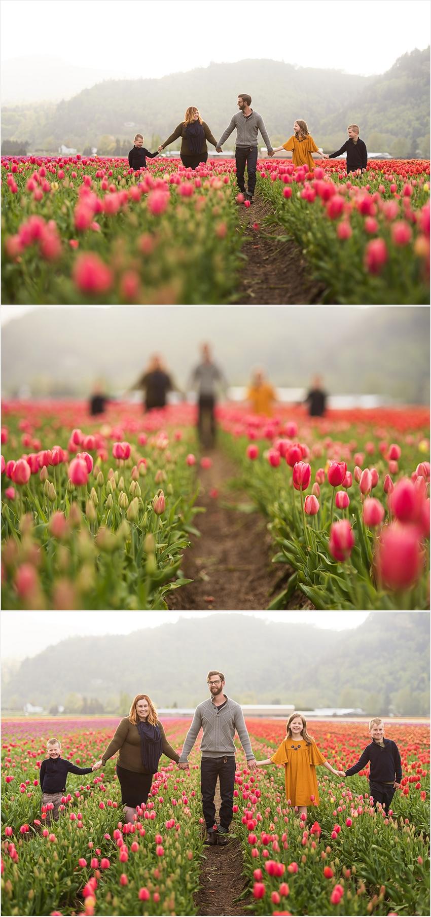 Abbotsford Photographer Family Children Tulip Farm Sunset 003 (Side 3)