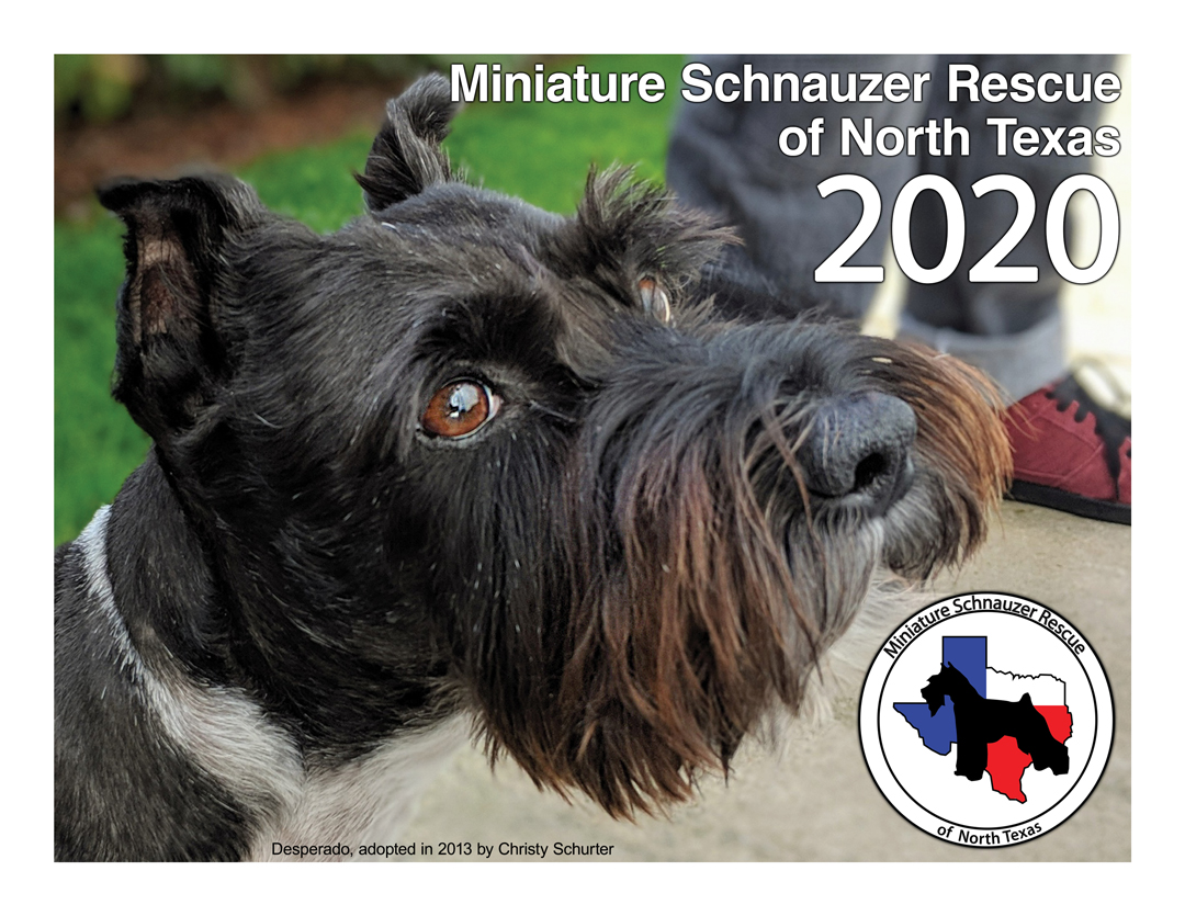 2020 Schnauzer Calendars