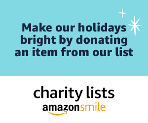 amazon smile charity 2019