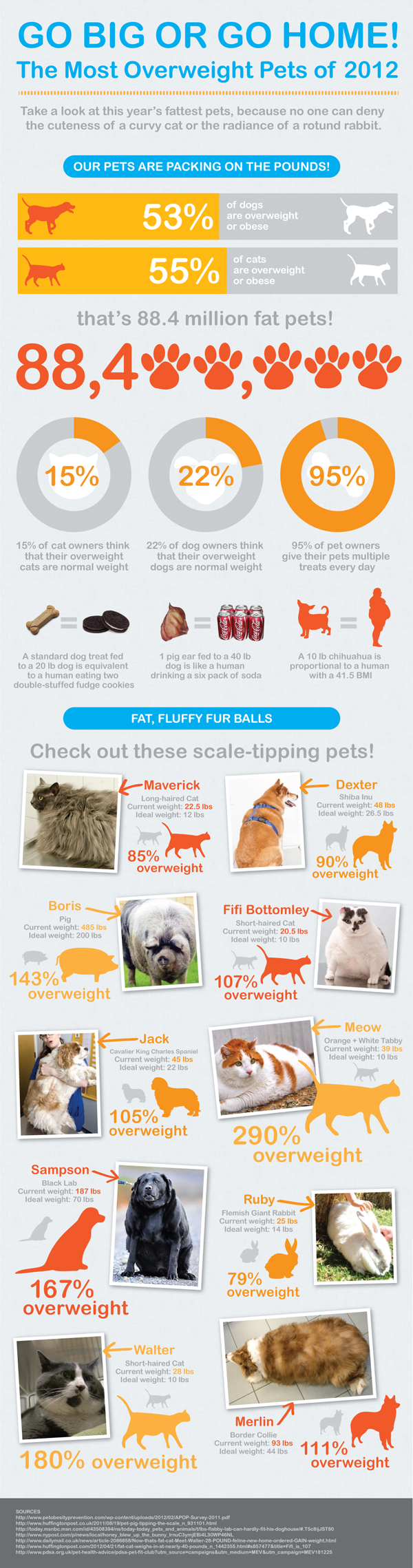Fattest Pets of 2012