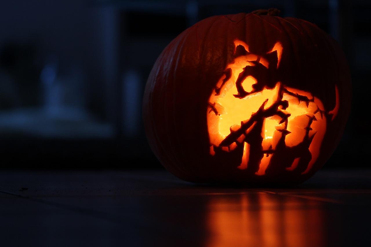 albuquerque pet halloween