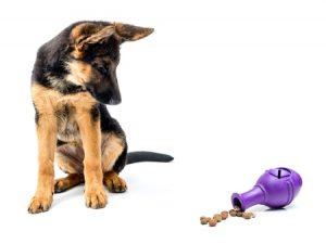 pet food puzzles vetco