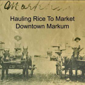 a-markum-rice