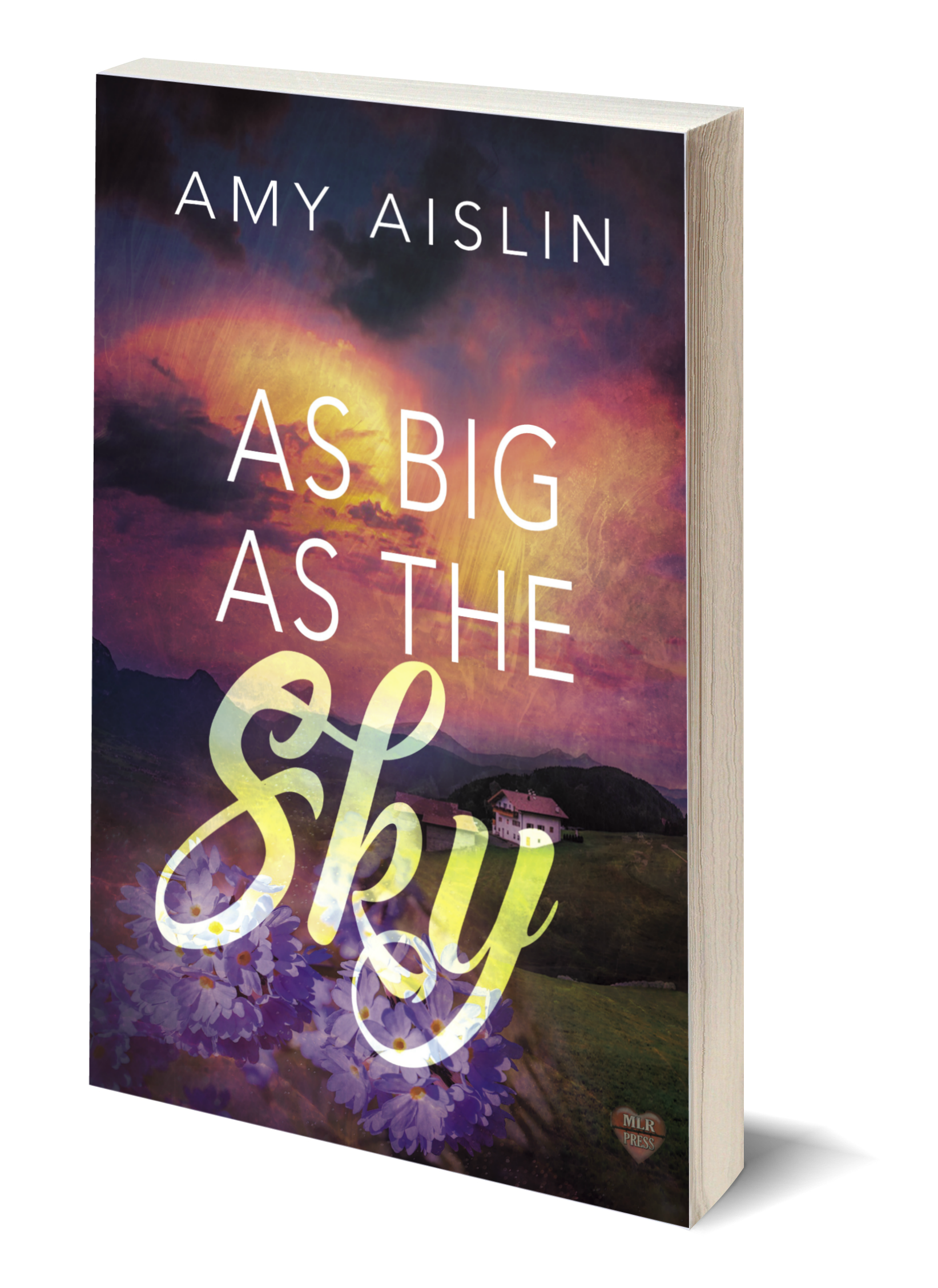 As Big As the Sky_3D Cover