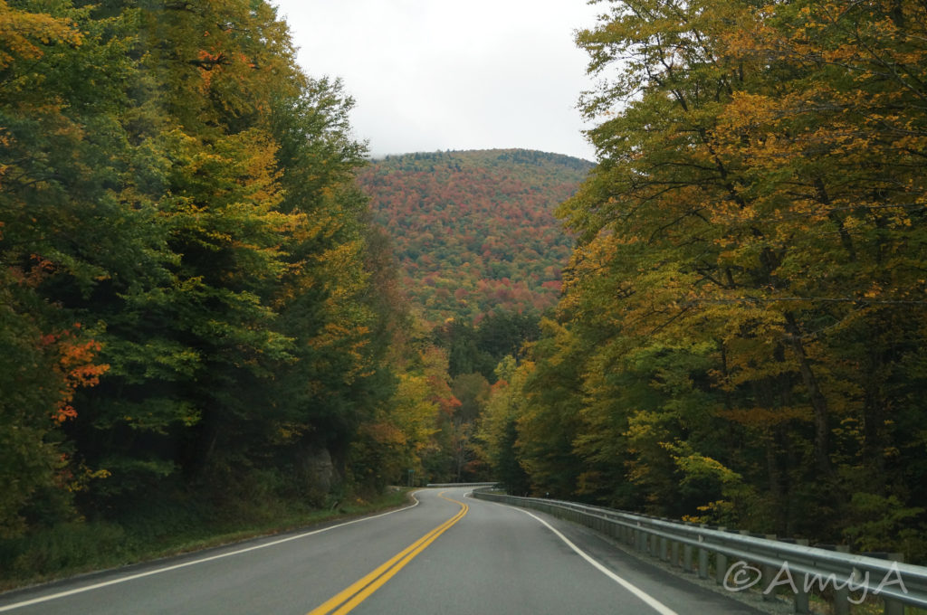 Vermont, in October, somewhere in the mountains. I love Vermont in the fall. I love Vermont in general, but in the fall it's beautiful.