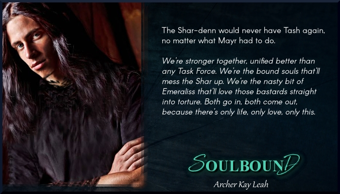 MEME 2 - Soulbound - Archer Kay Leah