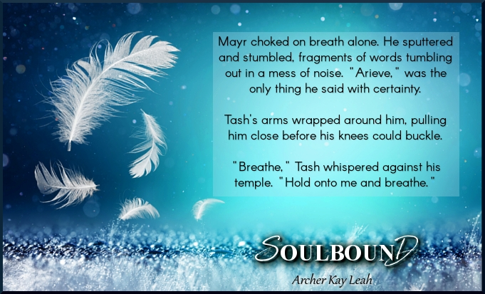 MEME 4 - Soulbound - Archer Kay Leah