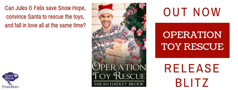 Release Blitz & Giveaway: Sarah Hadley Brook's Operation Toy Rescue