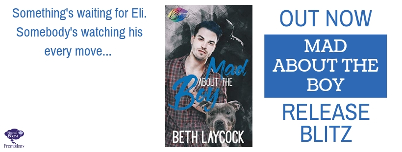 Release Blitz & Giveaway: Mad About the Boy by Beth Laycock