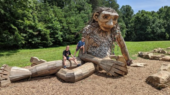 Forest Giants in Bernheim Forest