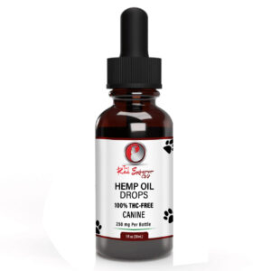 CBD Oil For Pets and Animals