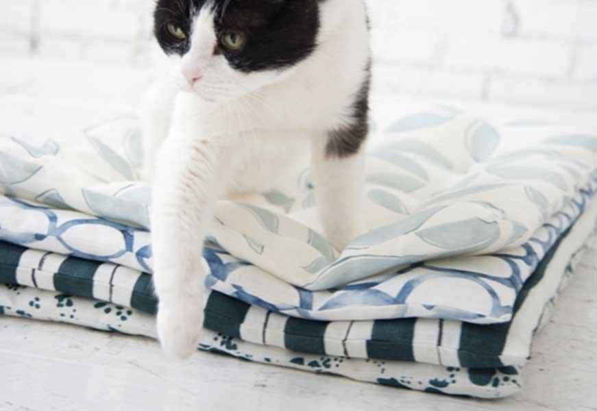 Cozy Cat Bed DIY