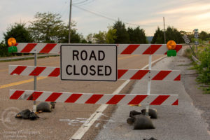 A Road Closed sign on highway 41/64/72 at the Lee Highway bridge over the Tennessee River.