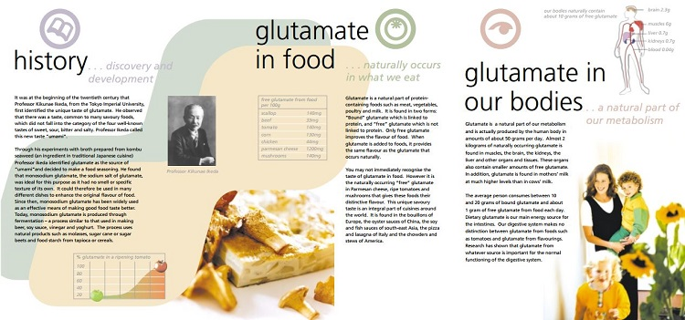 Glutamate Facts Leaflet