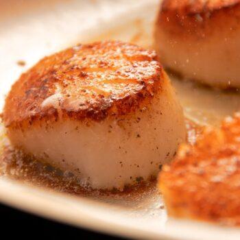 pan seared sea scallops