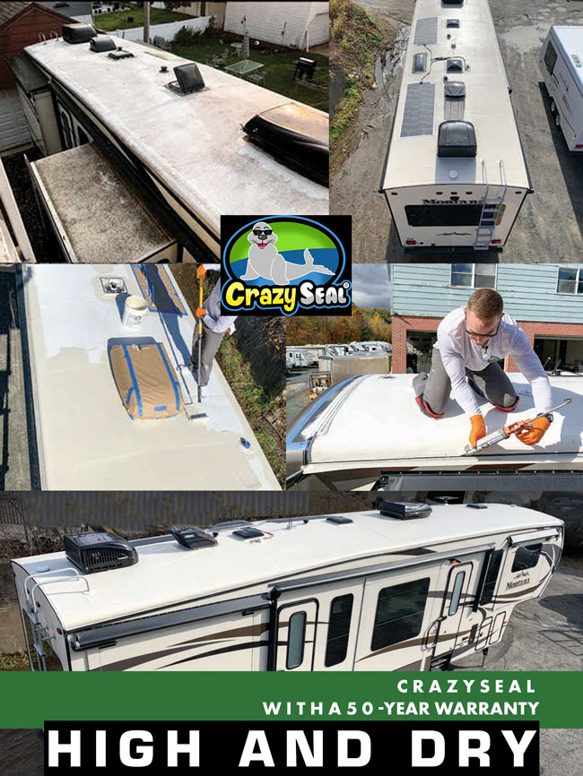 Crazy-Seal-Trailer-Life-Article-Dues_web_new