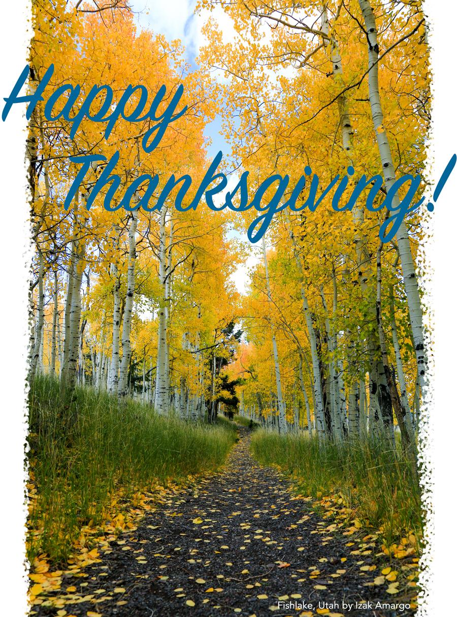 happy thanksgiving fall photo