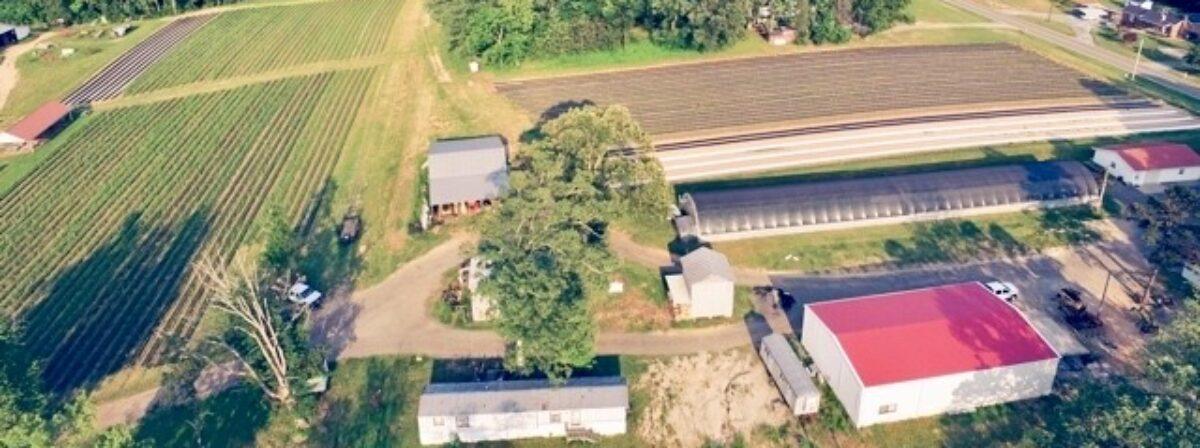 Rudd Farm