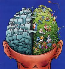 How the brain is organized