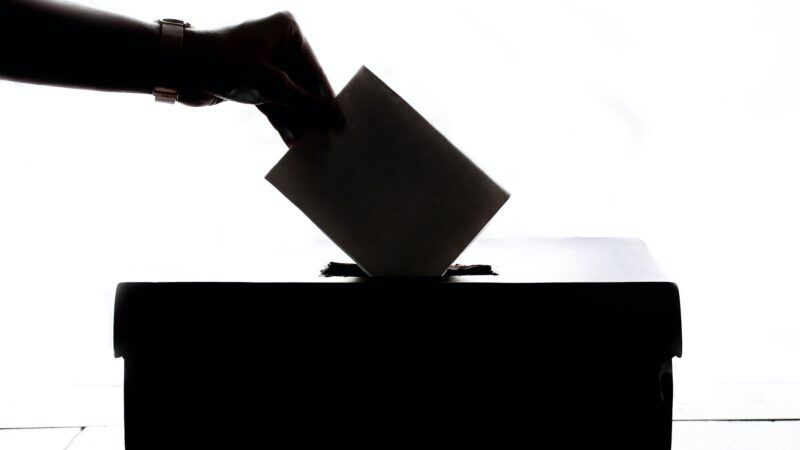 Hemp & This Election