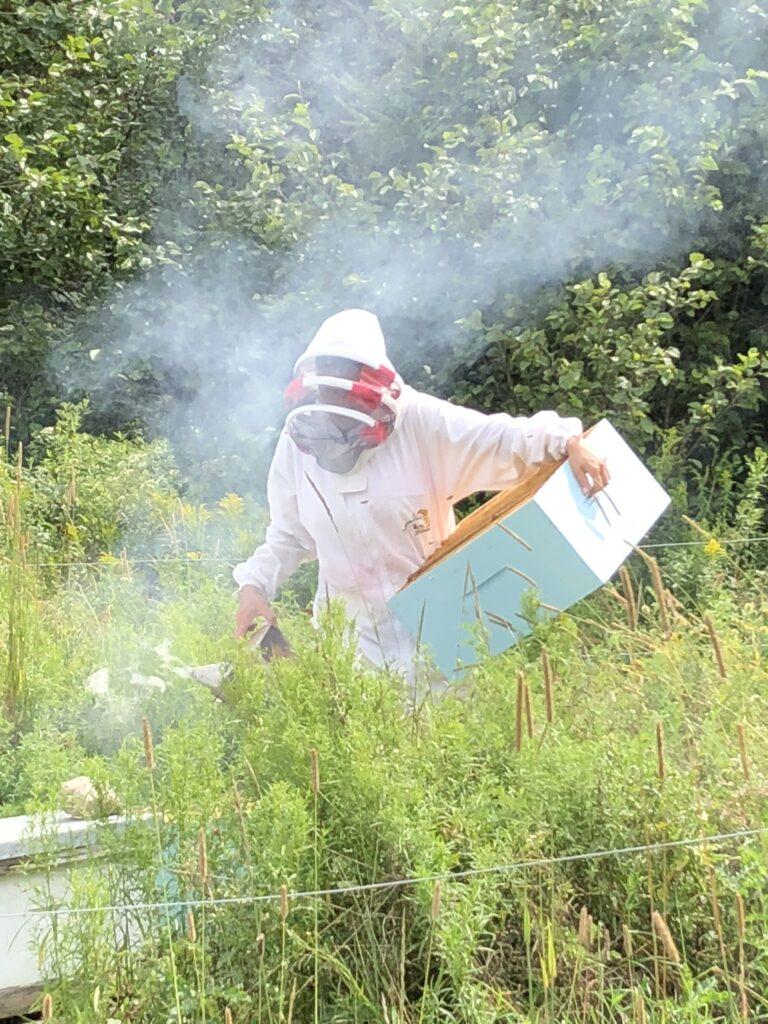 Sophie en tenue d'apicultrice
