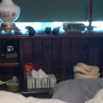 Picture of our waterbed headboard