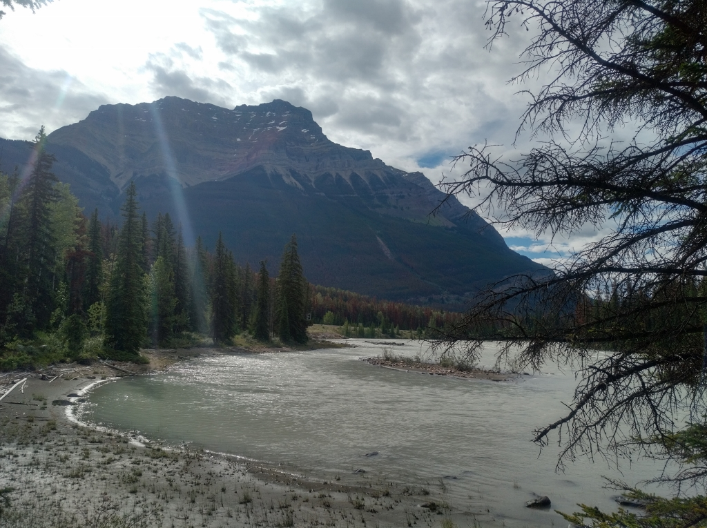 The Athabasca River at the bottom of the falls.