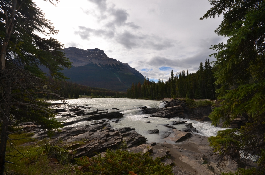 The Athabasca River before descending the falls