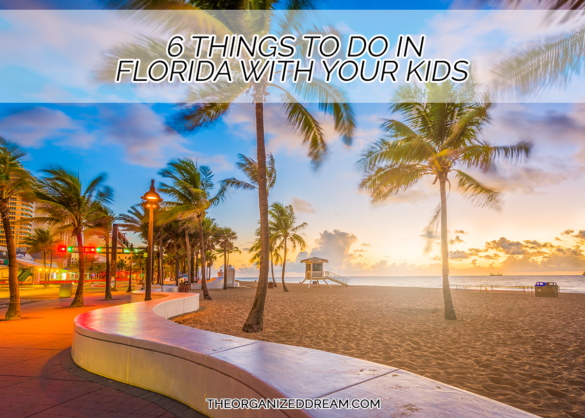 Six things you can do in Florida with your kids. #travel #kids #vacation
