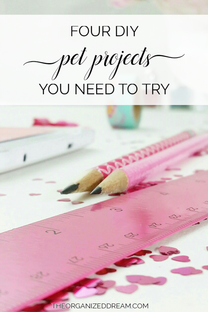 Four DIY Pet Projects You Need to Try