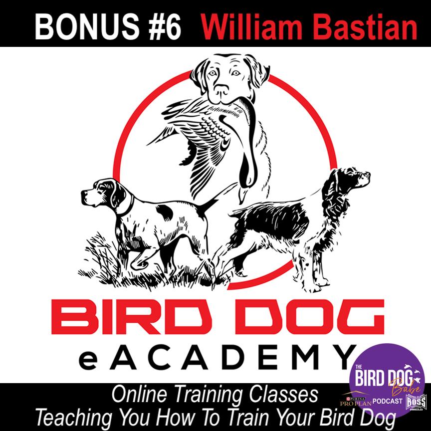 Bonus #6 – Bird Dog eAcademy: Teaching You How To Train Your Bird Dog w/ William Bastian