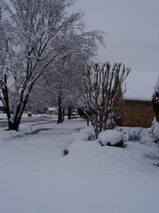 Snow North Texas 2009