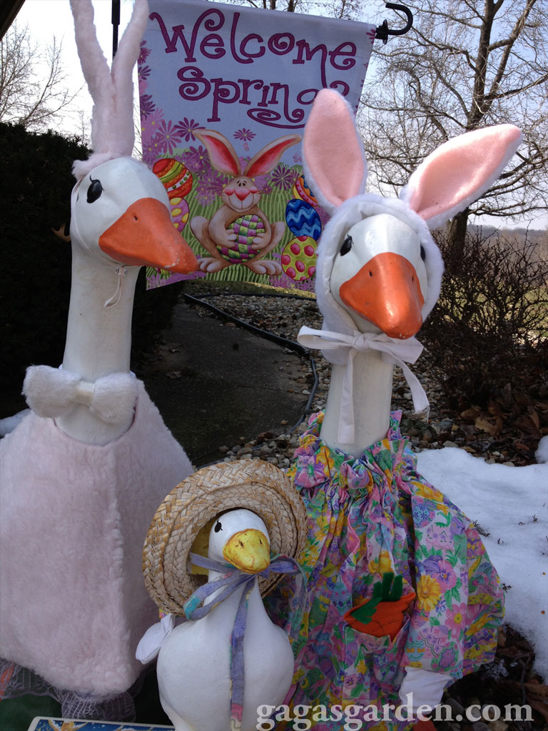 Happy Easter from Gaga's Garden Geese Family